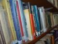 8. biblioteca_jose_hernandez_madariaga.jpg