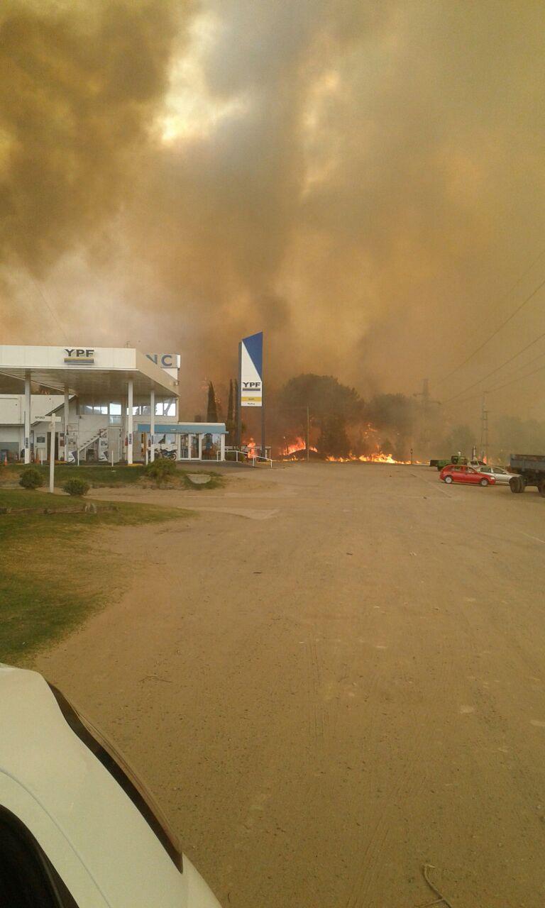 Combaten un incendio de magnitud con fuerzas vivas de toda la zona