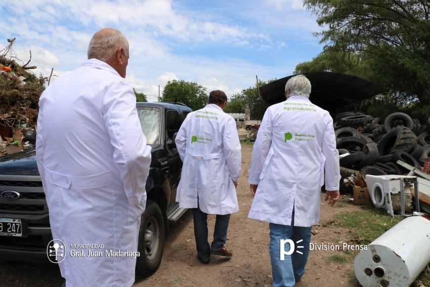Decomisaron unos 300 kilos de carne vacuna que era transportada sin fr