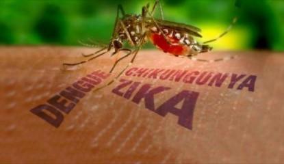 Embarazadas deben consultar antes de viajar a pa�ses con presencia de Zika