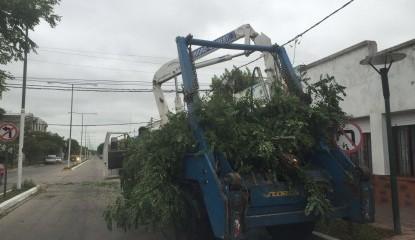 Intenso trabajo de municipales para limpiar la ciudad tras el temporal