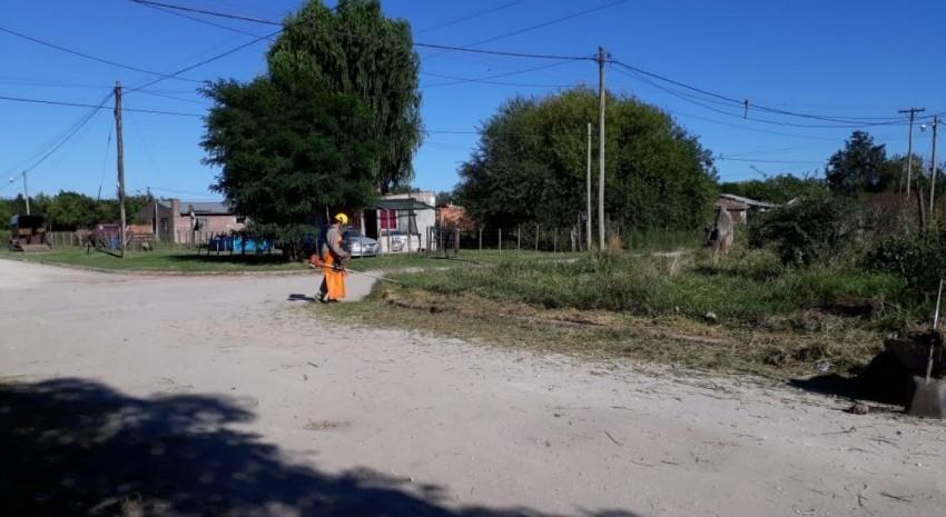 limpieza de terrenos