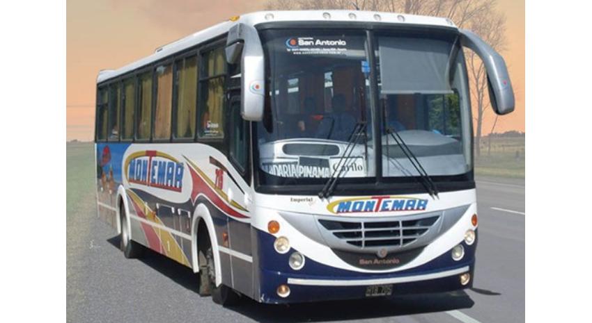 Fiesta Regional del Kiwi: ¿A qué hora salen ómnibus a Macedo?