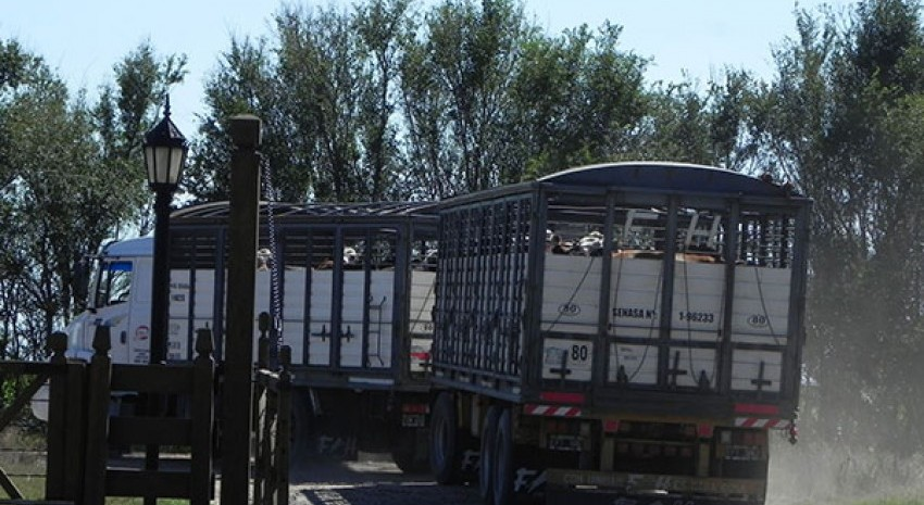 transporte de hacienda