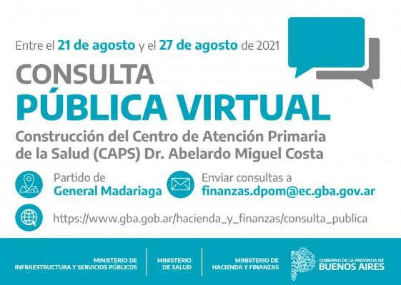consulta publica virtual